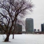 冬のトロント