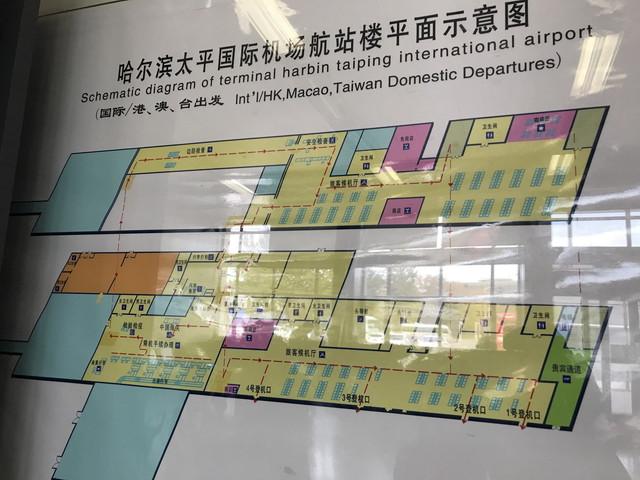 ターミナルマップ